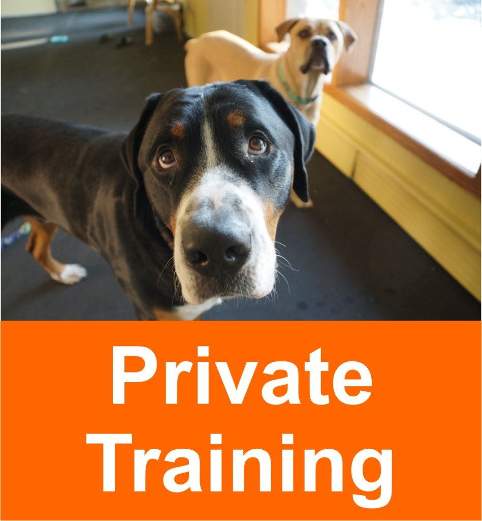 Private Training