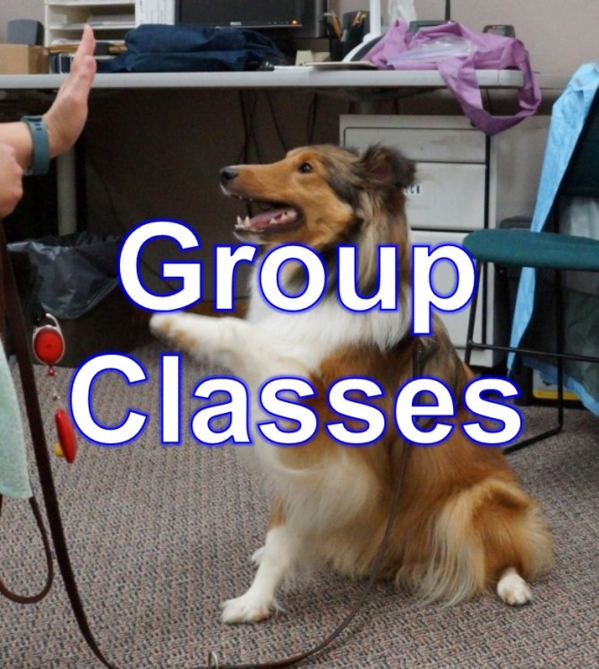 Group_Classes_1