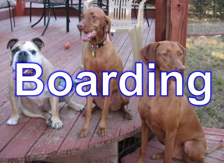 boarding_1