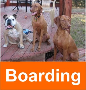 boarding_2