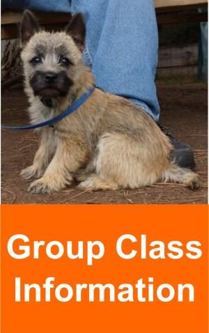 group_class_info