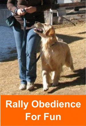 rally_obedience_2