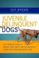 JuvenileDog_Final_Front_4d_CC7