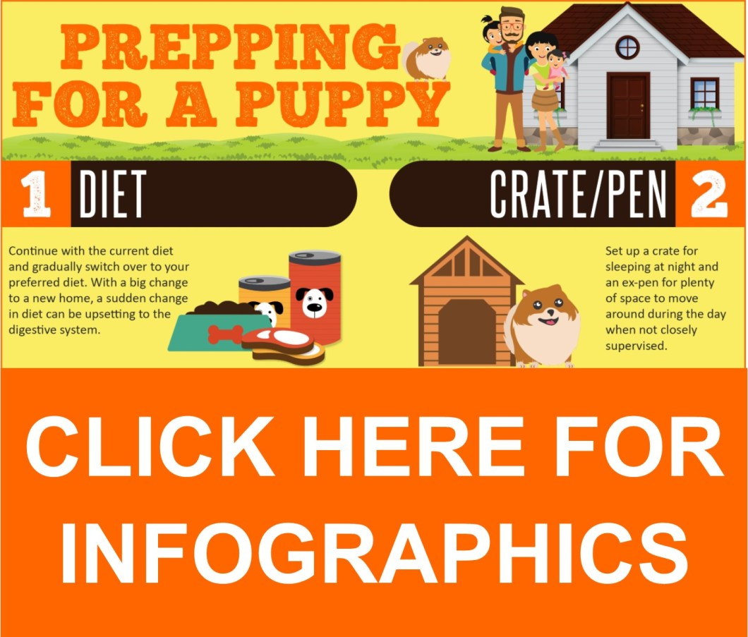 Our Infographics