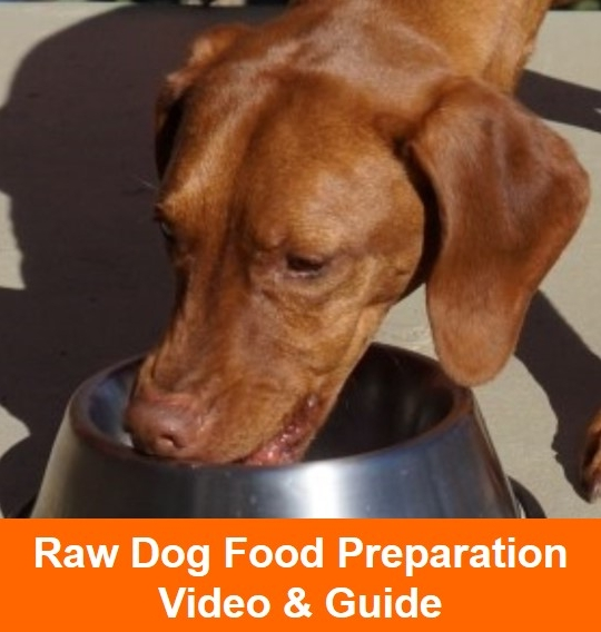 Raw Dog Food Preparation Video & Guide