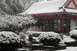 201212 LM Shangri La snow