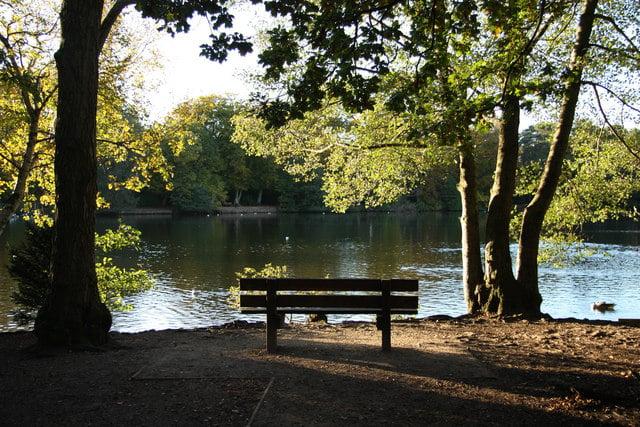 Hartsholme Country Park in Lincoln. Photo: Richard Croft