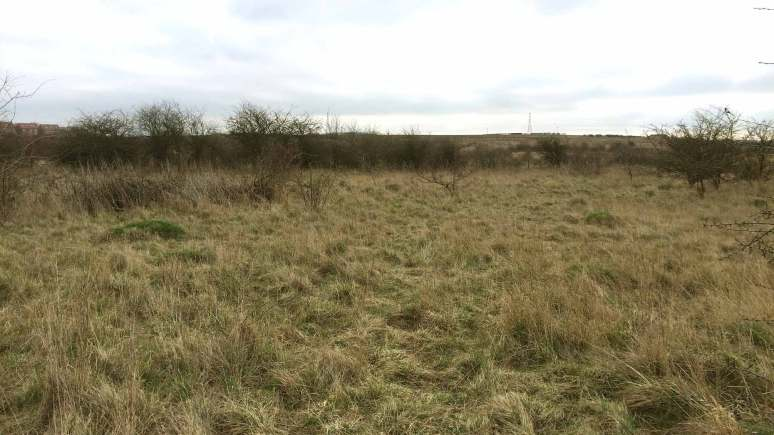 The Greetwell Quarry area off Carlton Boulevard in Lincoln