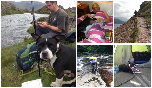 Marc and Phillippa Strowger and their dog Snoop are travelling 192 miles in two weeks.
