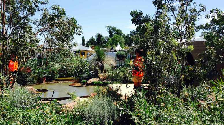 The garden won 'Best in Show' at the RHS Hampton Court Palace Flower Show.