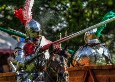 joust-image-knight