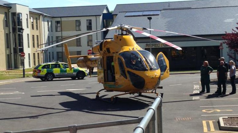 An air ambulance took the elderly woman to hospita;. She is suffering serious head injuries.