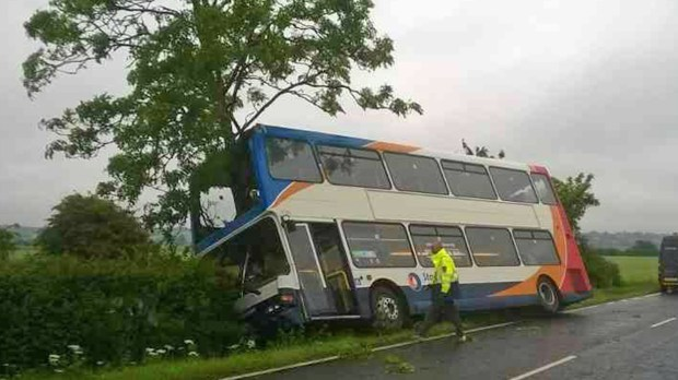 The bus veered off the road and into a tree, which was lodged into the front section.