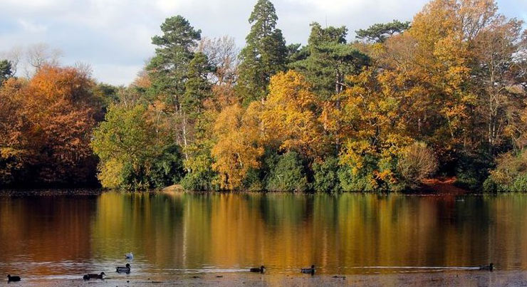 hartsholme-country-park