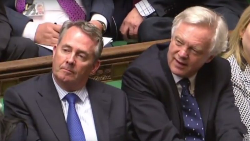 Liam Fox (left) and David Davis (right)