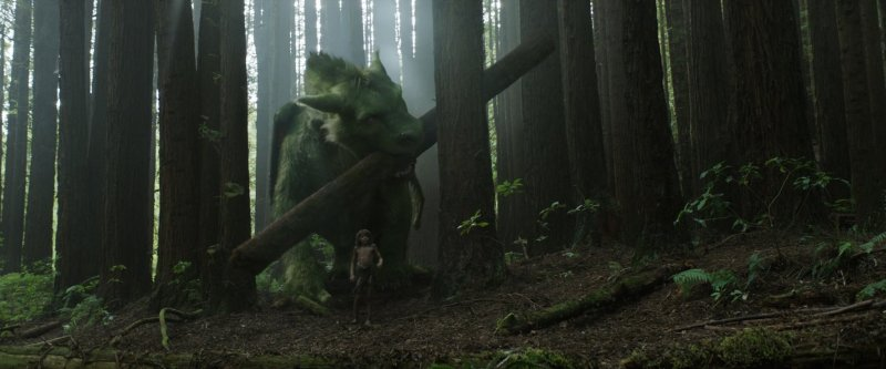 Oakes Fegley in Pete's Dragon. Photo by Disney.