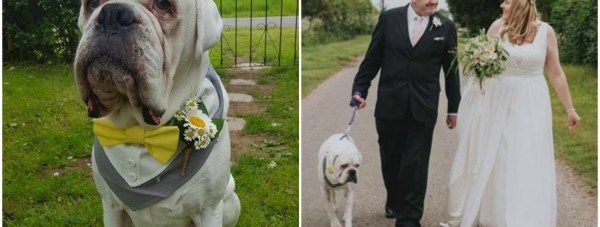 Emma said there was no question that their gorgeous pooch Buster would be a part of their big day.