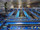 Branston potato suppliers invest in £6m state-of-the-art equipment at Lincoln village site