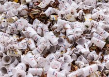 Call for Lincoln council to ban single-use plastics