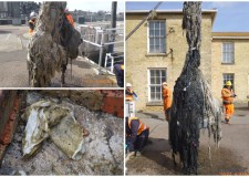 Chewing the fatberg: Lincoln dumping 21 tonnes of unflushables each week