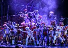 Purrfect meow-ment behind the scenes of CATS musical