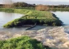 Helpless Lincoln farmers watch torrent flow onto land for five days