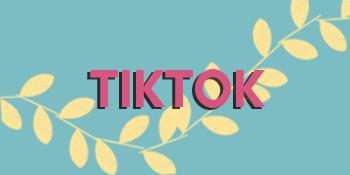 the lingerie princess TikTok