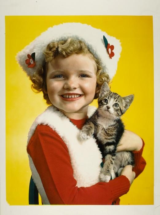"""Cuddles"" killed Sally to garner more share of cuteness spotlight."