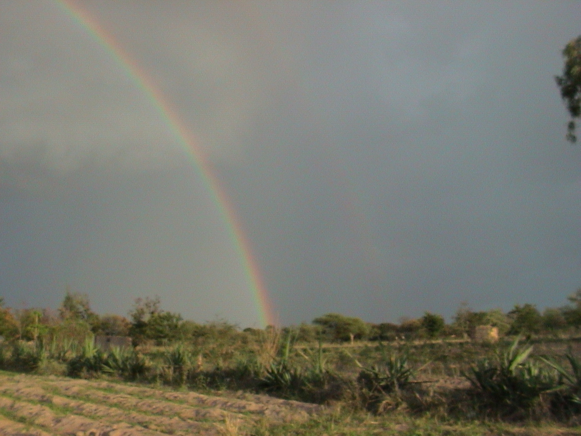 Rainbow Over Lion of Judah Academy