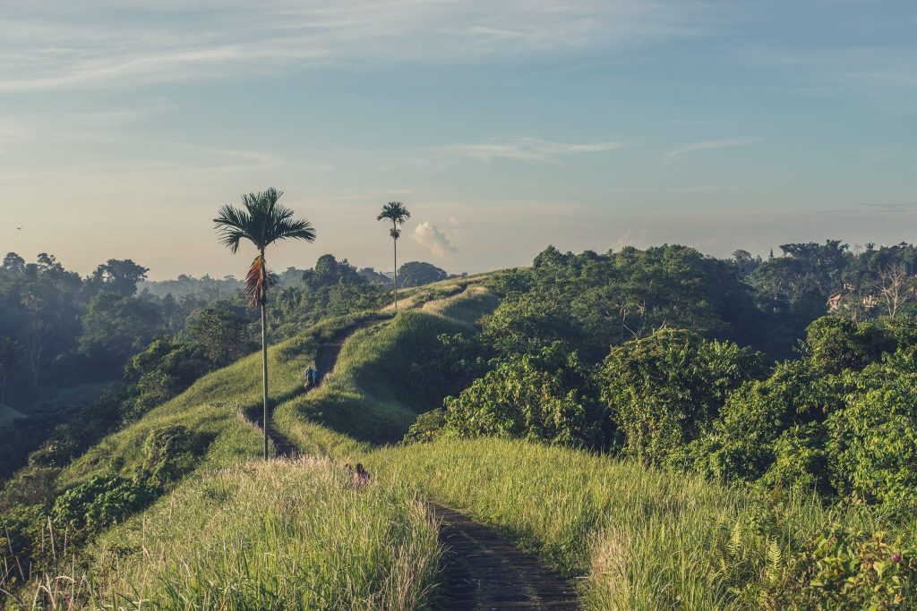 5 Trips I Want to Take After Graduation