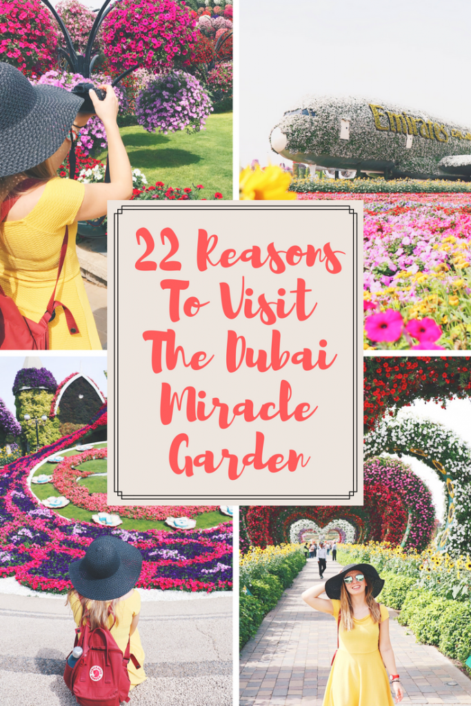 22 Reasons To Visit The Dubai Miracle Garden