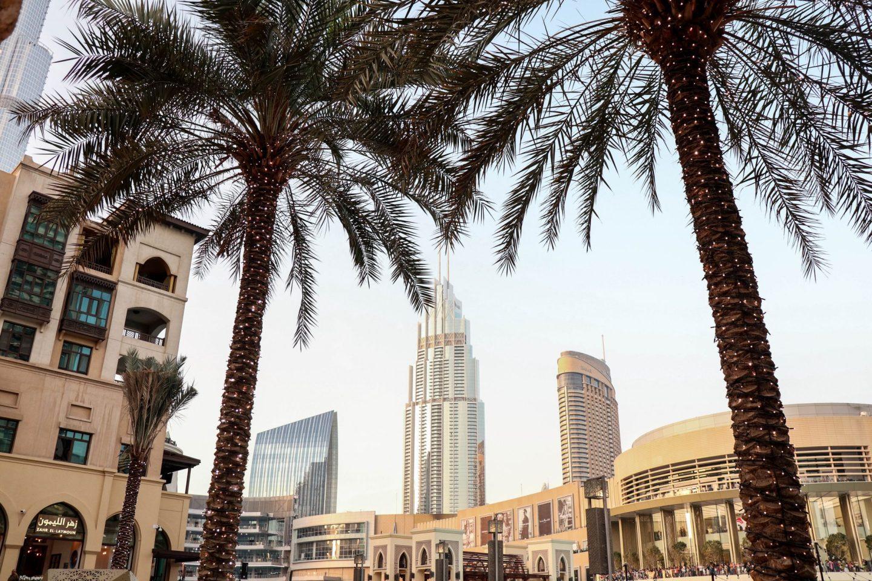 Abu Dhabi vs Dubai for a Layover