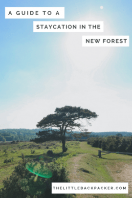 A guide to a staycation in the New Forest - where to stay, what to do and key spots to visit