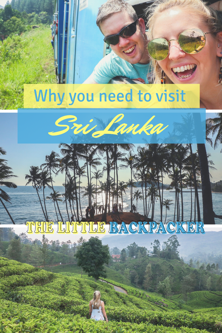 why you need to visit Sri Lanka - a post packed full of reasons why this country should be on your bucket list!