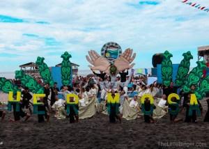 Pawikan Festival   The Little Binger