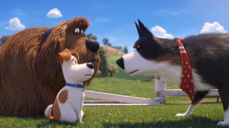 The Secret Life of Pets 2 | The Little Binger | Credit: United International Pictures