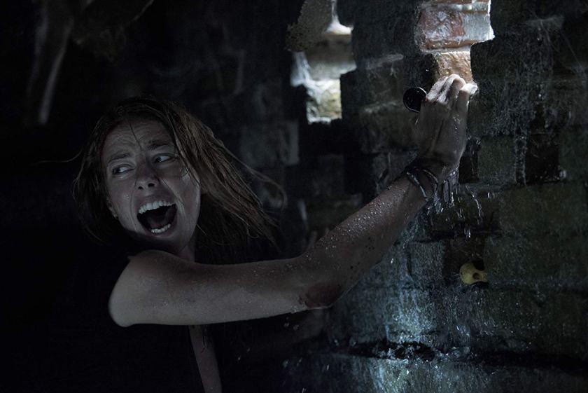 Kaya Scodelario powers through in Crawl! | The Little Binger | Credit: United International Pictures