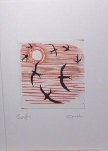 Swifts - red sky