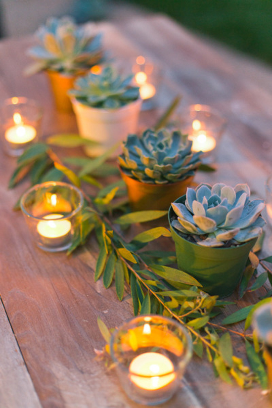Image result for images of candles and succulents
