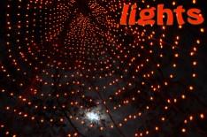 (1) Lights: Longwood Gardens