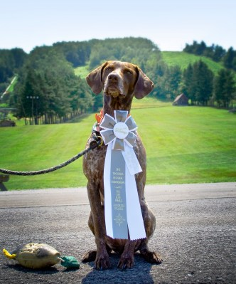 Bailey with her world qualifier ribbon
