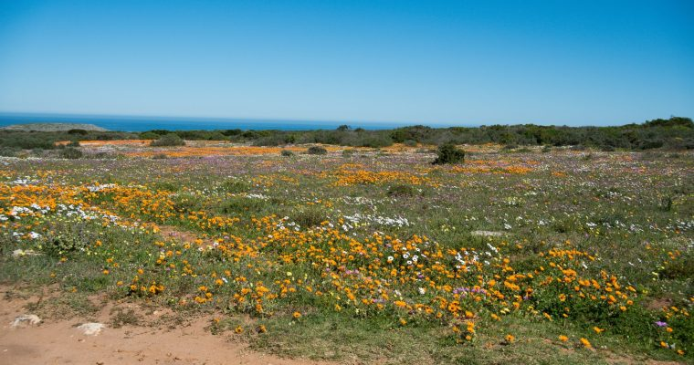 {TRAVEL} Top five things I'd miss about SA: Tourism & Heritage Month