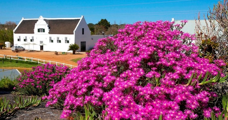 {EVENT} Don't miss Groote Post's spring market on 30 September 2018!