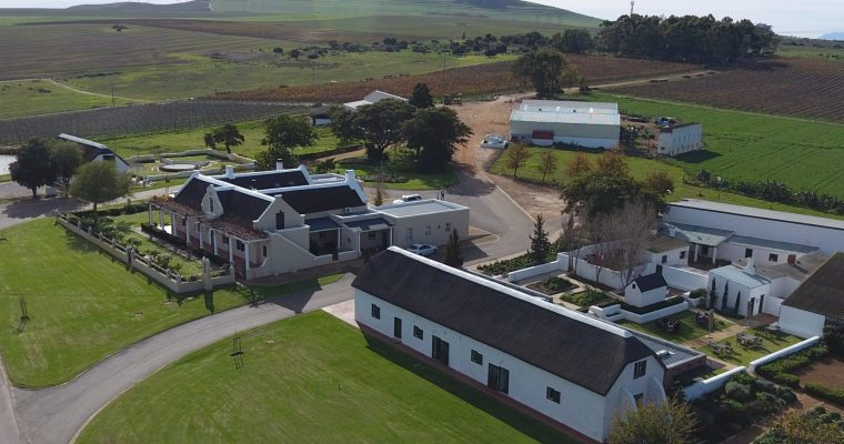 {NEWS} Groot Phesantekraal Estate in celebration mode