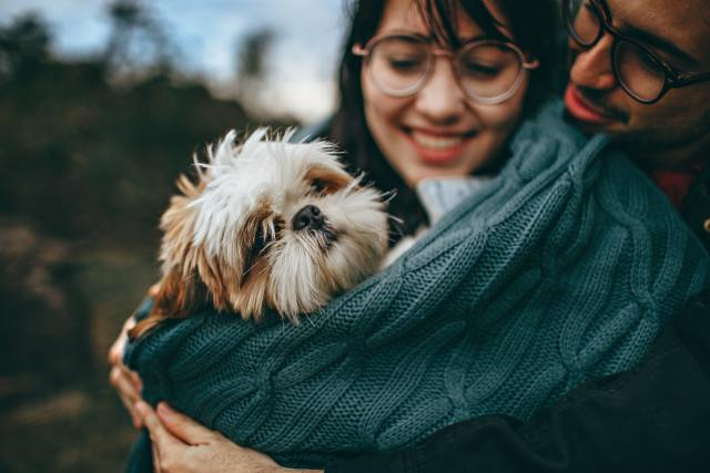 Renters will now be able to legally reside with their pet as the norm.