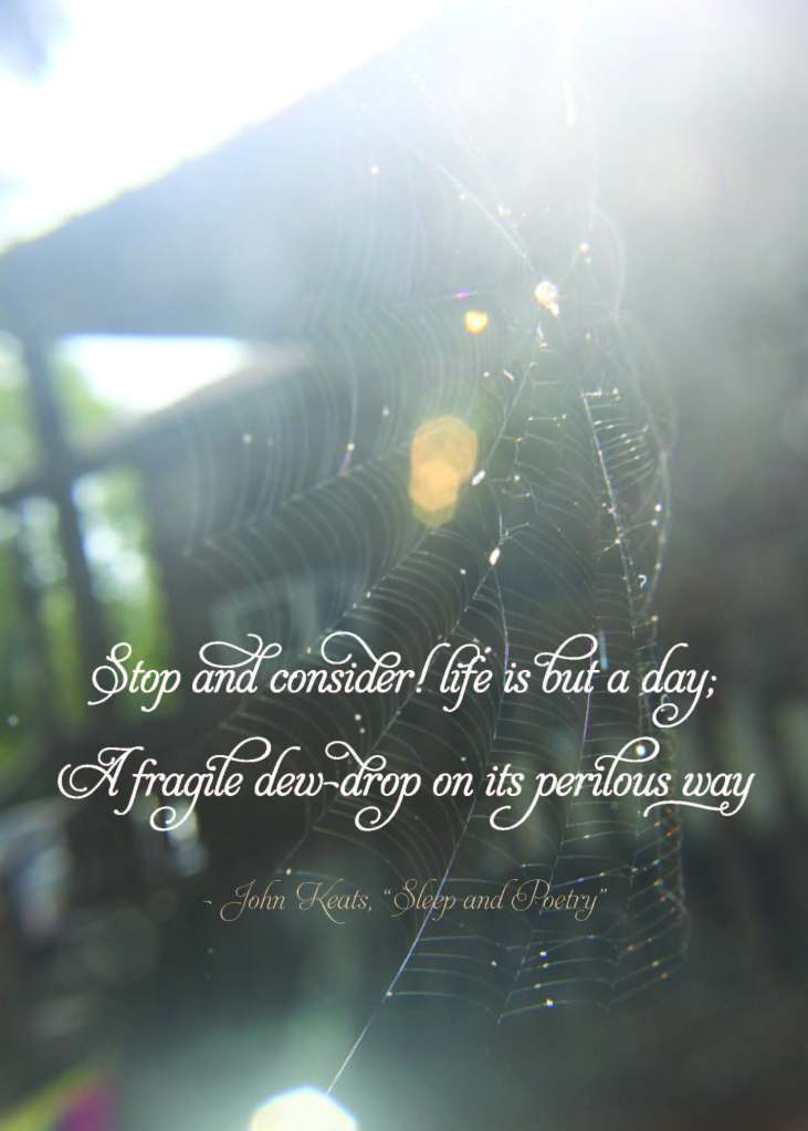 Stop and consider! life is but a day; A fragile dew-drop on its perilous way.