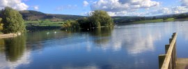 Reflections in Llangorsty Lake, Powys