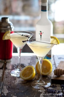Honey-Bee-Martini-Marla-Meridith-IMG_0861