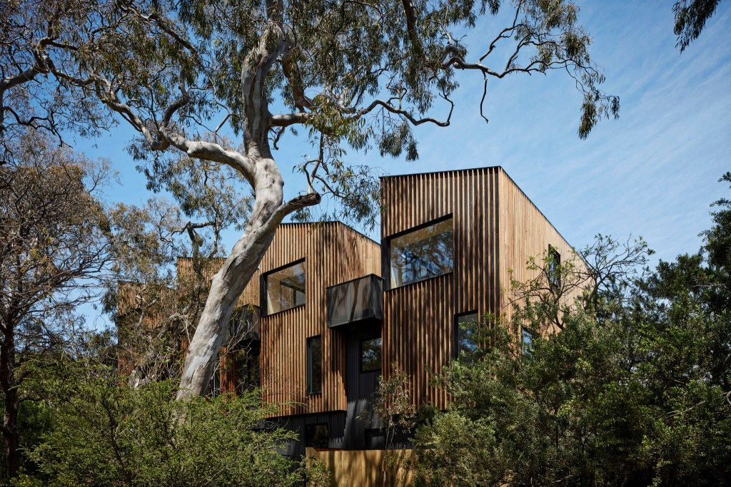 Gallery Of 11 St Georges Grove By Mancini Made Local Australian Construction & Residential Design Parkville, Vic Image 1