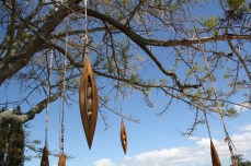 Tree of Golden Pods